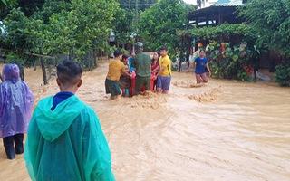 Video: Gió mạnh cây đè chết một người ở Thừa Thiên Huế