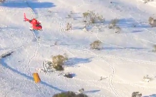 Video: Trực thăng thả thức ăn xuống các trang trại bị tuyết dày cô lập