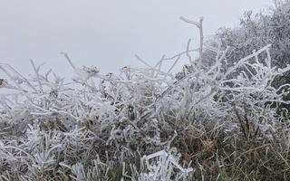 Góc nhìn trưa nay | Nhiệt độ giảm sâu, băng giá phủ kín núi cao