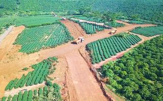 Video: Hiến đất làm đường tại Bảo Lộc thực chất là phân lô, tách thửa, công an đang điều tra