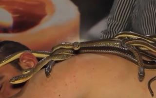 Video: Độc lạ dịch vụ dùng rắn massage giảm đau