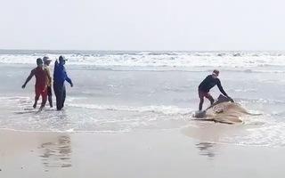 Video: Du khách tá hỏa phát hiện thi thể trôi dạt trên biển Vũng Tàu