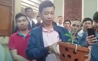 Video: Cơ quan thuế đang xác minh vụ bán lan đột biến hơn 1,6 tỉ đồng ở Nghệ An