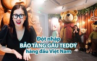 'Đột nhập' bảo tàng gấu Teddy hàng đầu Việt Nam trước giờ khai trương