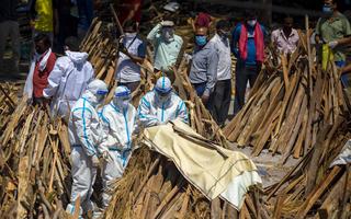 Video: Ấn Độ chặt cây trong công viên để hỏa thiêu thi thể bệnh nhân COVID-19
