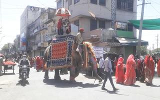 Video: Chú rể vẫn cưỡi voi đi đón dâu bất chấp dịch ở Ấn Độ
