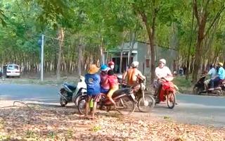 Video: Vào thăm rẫy, chủ vườn phát hiện người làm thuê tử vong trong lô cao su
