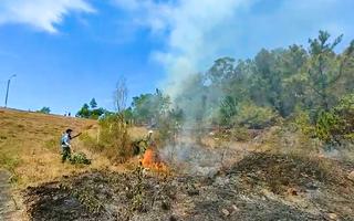 Video: Rừng thông ở Quảng Nam cháy suốt nhiều giờ liền