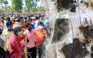 Video: Hàng ngàn người đổ xô đi xin 'thần dược' trị Covid-19 ở Ấn Độ