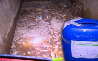 Video: Một cơ sở chế biến khô dùng 'hóa chất công nghiệp dệt' để ngâm rửa cá