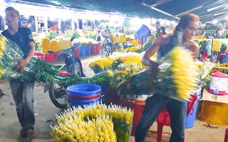 Video: TP.HCM cho mở lại chợ hoa Đầm Sen trong 3 ngày, chia sẻ với nông dân Lâm Đồng tiêu thụ hoa