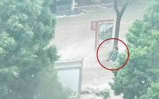 Video: Người đàn ông giữ được mạng sống nhờ bám chặt vào thân cây giữa dòng lũ chảy siết