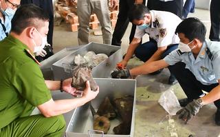 Video: Phát hiện hơn 138kg nghi là sừng tê giác và hàng tấn xương động vật hoang dã quý hiếm