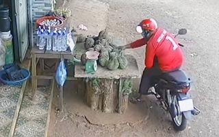 Video: Thanh niên trộm 7 trái sầu riêng và xe đạp trẻ em giữa mùa dịch