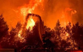 Video: Nắng nóng kỷ lục, hàng nghìn người buộc phải di tản do cháy rừng
