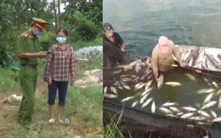 Video: Tạm giữ hình sự người đổ thuốc sâu xuống ao của hàng xóm, hơn 4 tấn cá phơi bụng