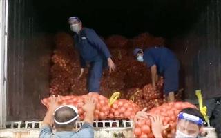 Video: Rau, củ về chợ đầu mối Hóc Môn, người dân có thêm hàng tươi