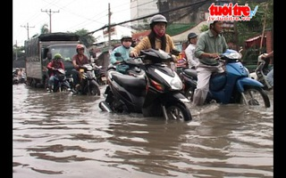 Dân bỏ việc vì mưa ngập nhà