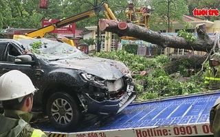 Hà Nội ngổn ngang sau bão, 1 người bị thương