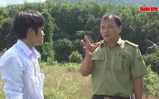Tích cực bảo vệ đàn voi rừng tại Quảng Nam
