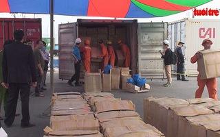 Thu giữ 6 tấn ma túy thảo dược tại cảng Tân Vũ