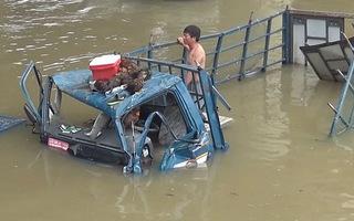 NINH THUẬN: Xe tải chở gà mất lái lao xuống sông