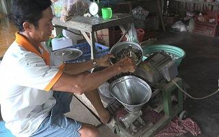 Mùa lũ bắt cua ốc làm thức ăn giảm chi phí nuôi lươn