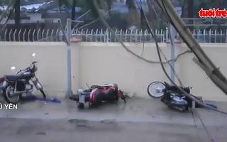 Bão số 12 càn quét: Khánh Hòa, Phú Yên nhà tốc mái, cây đổ đầy đường