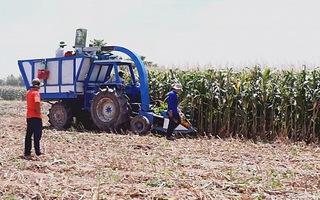 Sáng chế độc đáo, 1 lít xăng xử lý được 10 tấn cây bắp
