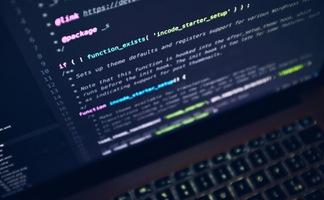 Hacker tấn công Google và Skype đã bị kết án 2 năm tù