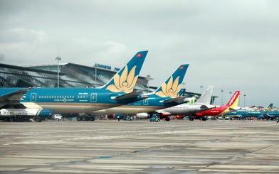 Chuyên gia gửi thư lên Thủ tướng về áp giá sàn vé máy bay, Thủ tướng giao Bộ GTVT xem xét