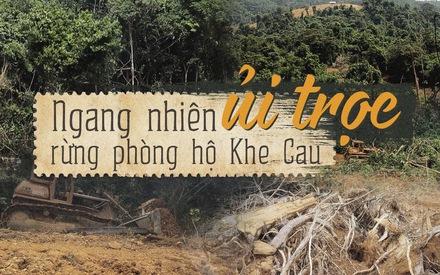 'Cạo trọc' rừng phòng hộ bằng xe ủi