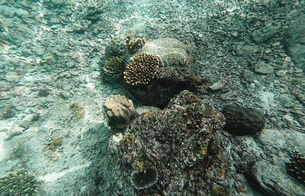 Đến Banda Aceh tắm biển ngay trên miệng núi lửa đang hoạt động