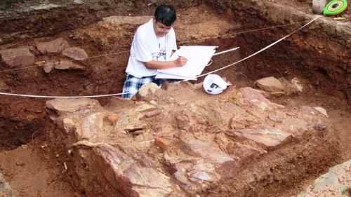 Tìm kiếm lăng mộ vua Quang Trung: Mở rộng khai quật