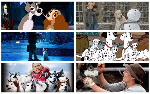 Năm Mậu Tuất xem 6 phim về những chú chó đáng yêu