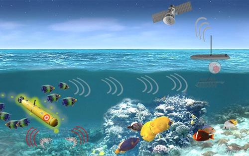 Quân đội Mỹ theo đuổi kế hoạch dùng sinh vật biển dọ thám