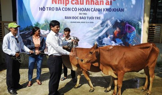 Báo Tuổi Trẻ trao bò giống cho người dân khó khăn Quảng Nam