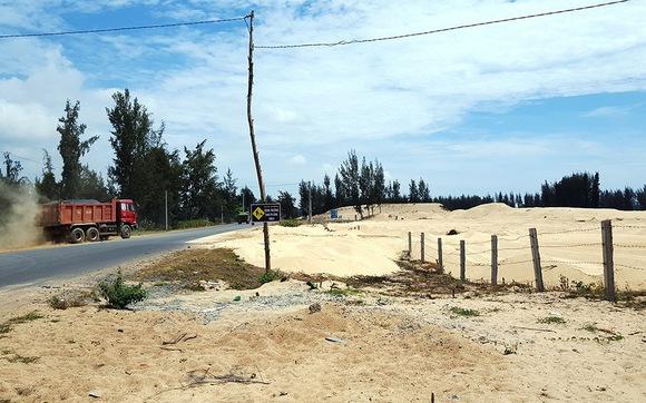 Phú Yên cho phá rừng phòng hộ làm dự án New City sai luật