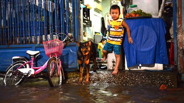 Không mưa, người Sài Gòn vẫn bì bõm lội nước