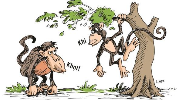 Mừng năm Bính Thân - bàn chuyện khỉ khọt