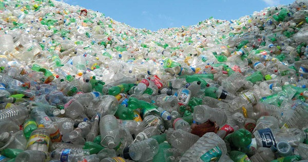 Videographic 1 chai nhựa mất 1000 năm để phân huỷ