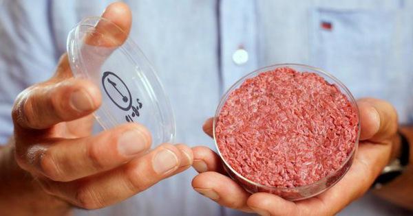 Thịt nhân tạo sẽ ''cứu'' môi trường trái đất?
