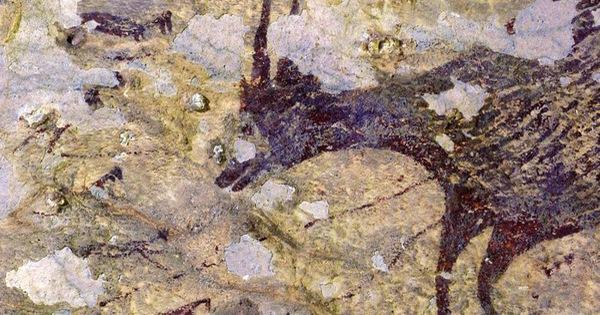 44 ngàn năm trước con người đã biết lập biên bản đi săn?