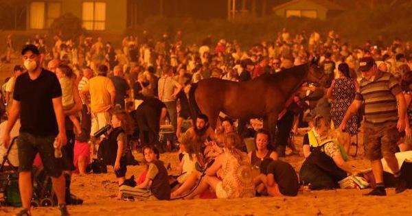 Thảm cảnh của người dân Úc trong mùa cháy rừng kinh hoàng