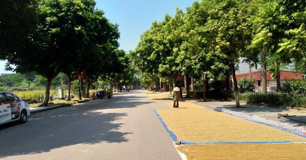 Hà Nội giảm thêm 2.519 thôn, tổ dân phố