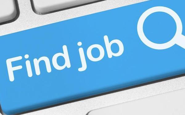 Nên lập web tuyển dụng cho sinh viên ngành sư phạm
