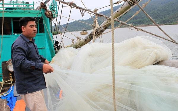 Đã liên lạc được tàu cá cùng 10 ngư dân Thanh Hóa