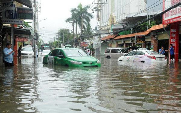 TP.HCM yêu cầu khẩn cấp giám sát rác thải sau bão