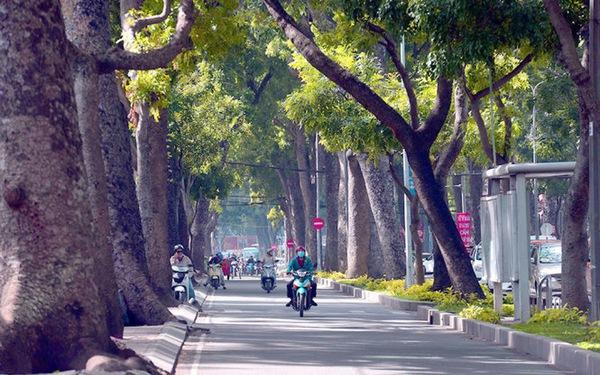 TP.HCM cấm nhiều đường trung tâm trong đêm giao thừa
