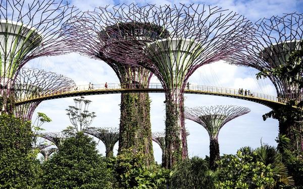 Những khu vườn trên cao nổi tiếng ở Singapore